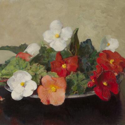 Frans Oerder | Stilleven met witte en rode begonia's | Kunsthandel Bies