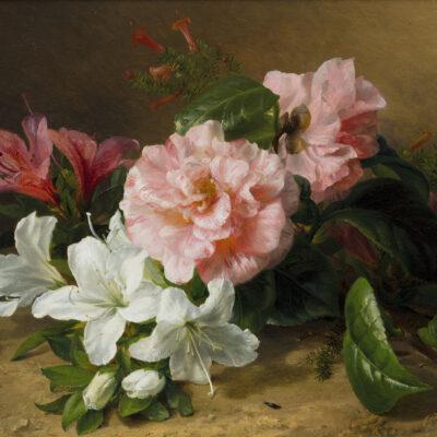 Gerardine van de Sande Bakhuyzen | Stilleven met camelia's en azalea's | Kunsthandel Bies