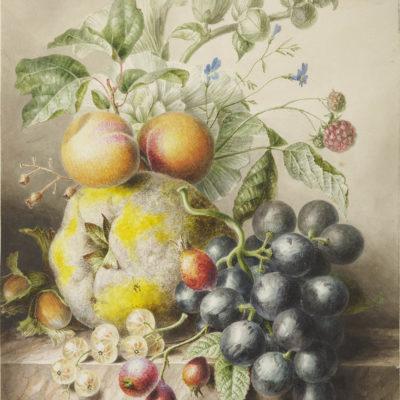 Willem Hekking Sr. | Stilleven met abrikozen, druiven en kruisbessen | Kunsthandel Bies