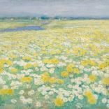 Paul Rink | Een veld met bloemen | Kunsthandel Bies